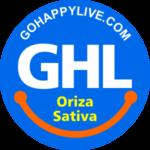 Oriza Sativa
