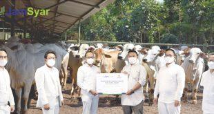 Tebar kebaikan di Tengah Pandemi Covid-19 PT JamSyar Salurkan 30 Ekor Sapi Kurban